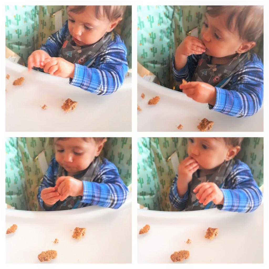 BeFunky-carrotcookies2